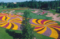 Sentry World golf course - the flower hole